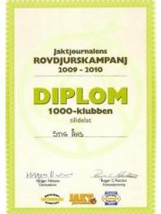 stigs_diplom2010